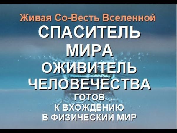 СПАСИТЕЛЬ МИРА - ОЖИВИТЕЛЬ ЧЕЛОВЕЧЕСТВА И ВСЕЛЕННОЙ (Александра Барвицкая-Женьшеневая Женщина)