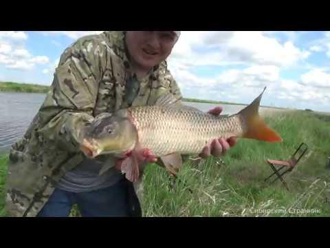Открытие рыбалки на фидер. Сазан есть. Давно не видел такого клева