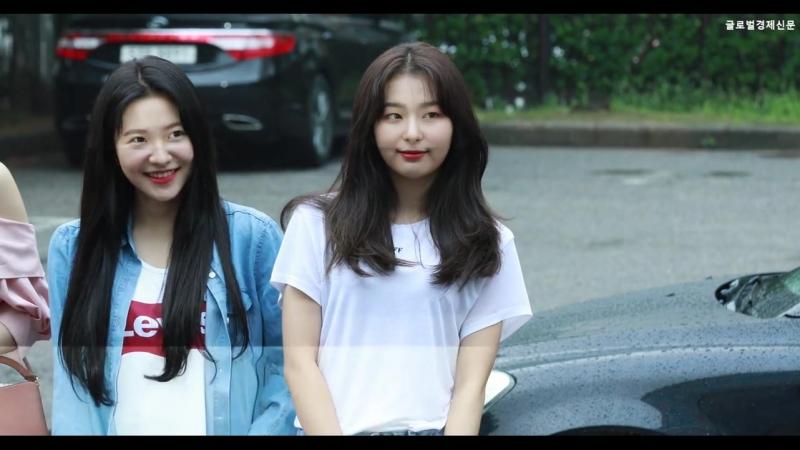 180629 레드벨벳(Red Velvet) 슬기, ˙귀여운 아기 곰의 모닝 하트˙ (뮤직뱅크 출근길) (출처 : 글로벌경제 연예부 | 네이버TV)