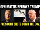 Trump Stands Tall for the Wall - Mattis Betrays Him as the Prez fights to save WESTERN CIVILIZATION