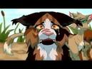 •Коты-воители• Кленовница - клип GRRRLS