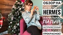 Чем славен парфюмерный бренд Hermès Обзор редких ароматов ирис ваниль и море и скандала с LVMH