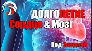 УБИЙЦА №1. Как НЕ умереть Рано! Инфаркт Инсульт атеросклероз