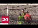 Тренировка за решеткой от Кокорина и Мамаева ждут футбольных побед в колонии Россия 24