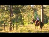 XXX-FOREST & XXX-HORSE