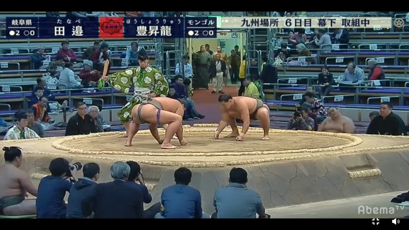 Hoshoryu 豊昇龍 v Tanabe Sumo 16 November 2018 Day 6