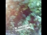VID_23020613_103354_163.mp4
