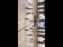 Команда синхронного катания Астарта