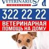 Вызов ветеринарного врача на дом в СПб
