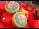 Уничтожение санкционных продуктов сыр Maasdam