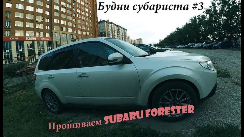 Будни субариста 3 Forester SH Шьем форя