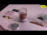 Creativity for Kids - Grow n Glow Terrarium Science Kit for Kids