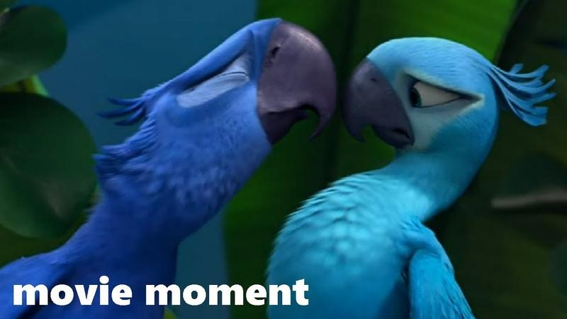 Рио (2011) - Голубчик встречает Жемчужинку (2/9) | movie moment