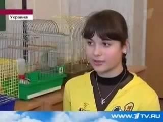 Дети Провели Эксперимент С Чипсами