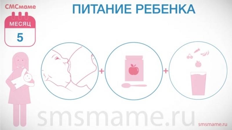 Ребенок 5 месяцев - рост и вес, режим дня, питание ребенка