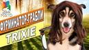 Фурминатор-грабли для собак Трикси | Обзор фурминатора для собак Трикси | Trixie dog's rusher review