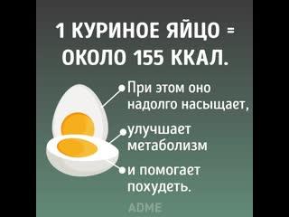 Вот что будет если съедать по 3 яйца в день