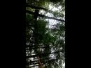 Верёвочный парк Эльф на Уралмаше