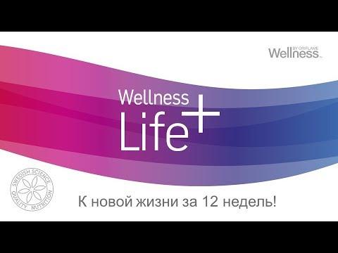4WOW Wellness спикер Елена Логинова