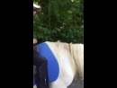 Выходной на лошадях!