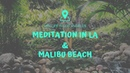 The Best Place To Meditate In LA and A Trip To Malibu - Van Life