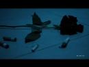 DJ MriD - Черная роза VIDEO 2018 djmrid