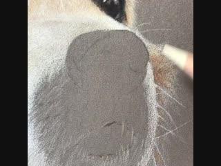 Как нарисовать носик