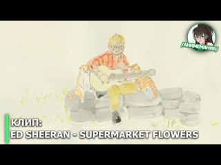 Ed sheeran – supermarket flowers. официальный клип в стилистке аниме