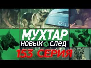 Мухтар. Новый след . 153 серия HD эфир от 07.03.2019. Любовь без границ