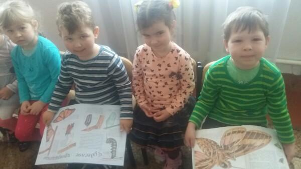 Донецкая республиканская библиотека для детей, отдел внестационарного обслуживания, мир насекомых, детям об обитателях планеты