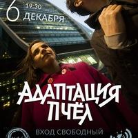 Адаптация Пчёл | Light Set | Нижний Новгород
