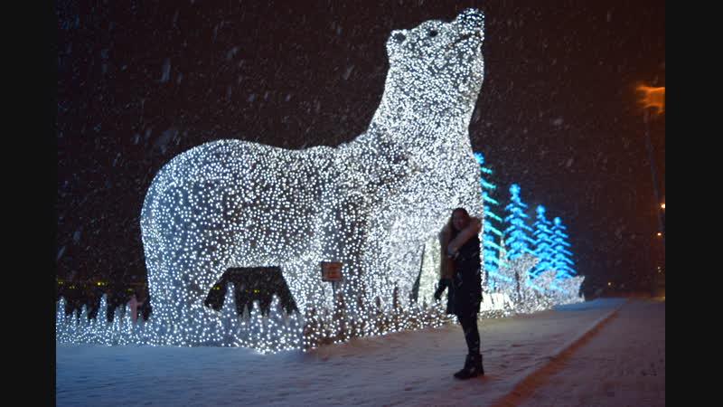 Белые медведи-великаны...Восхищение...