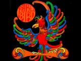 Rare Bird, Rare Bird 1969