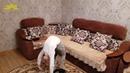 Моя сестренка, гимнастка - Хадижа Умудова