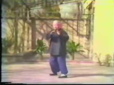 傅鐘文楊氏85式太極拳 Master Fu Zhong Wen Yang Style Tai Chi