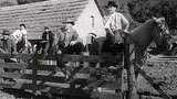 Requiebro (1955,Carlos Schlieper) Xvid Mp3 Castellano (Grupo Cine Clasico-Centralclasico)(found.via.clan-sudamerica.net)