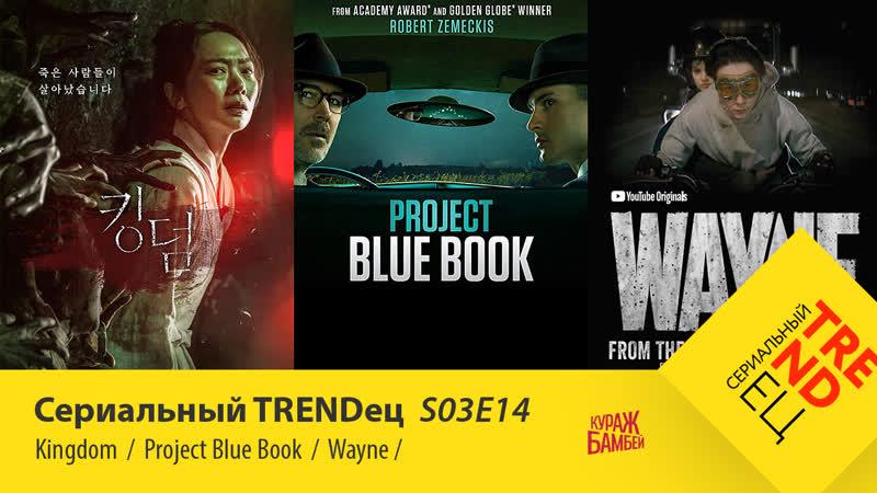 Королевство \ Wayne \ Проект Синяя Книга | Сериальный TRENDец | S03E14 (Кураж-Бамбей)