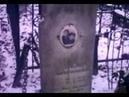 Как найти могилу битломана Всея Руси Коли Васина