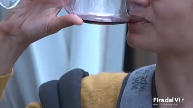 Fira del Vi de Falset (Выставка вин от DOQ Priorat и DO Montsant)