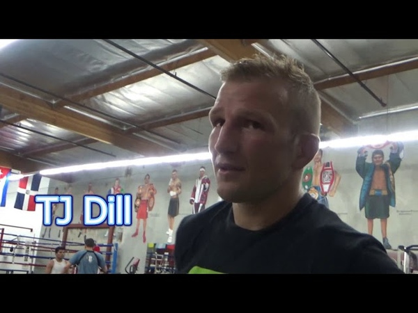(Boxing vs UFC) Lomachenko Sparring TJ Dillashaw - what would Happen If That Was TANK