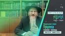 פרשת השבוע עם הרב הראשי - תרומה Недельная глава с раввином Лазаром - Трума