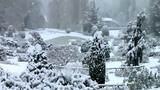 Salvatore Adamo - Tombe la neige - Pada sneg