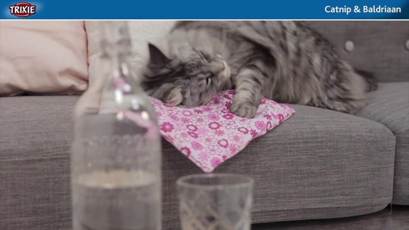 Katten tot spelen aanzetten m.b.v. catnip en baldriaan producten van TRIXIE Heimtierbedarf
