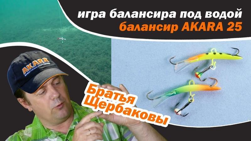 Игра балансира под водой AKARA 25 обзор Братья Щербаковы
