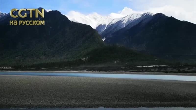 Долина реки Ялуцангпо в городском округе Ньингчи Тибетского автономного района КНР