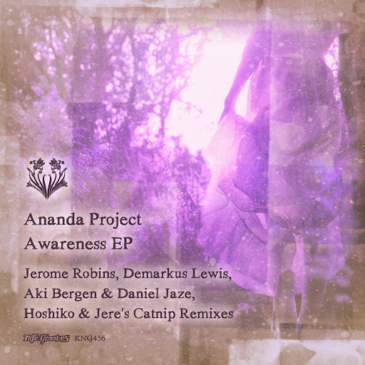 Ananda Project альбом Awareness EP