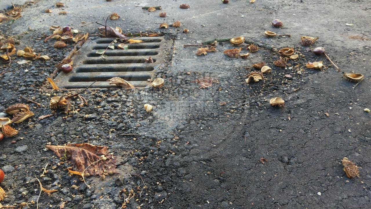 Власти Советска рассчитывают изыскать внебюджетные средства на ремонт дорог