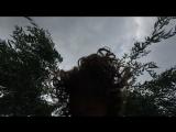 Salix maria ива плакучая (2018)