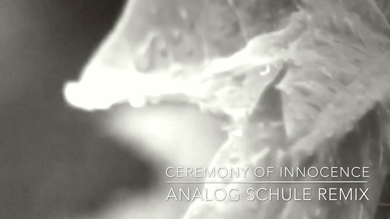 Moby - Ceremony of Innocence (Analog Schule Remix)