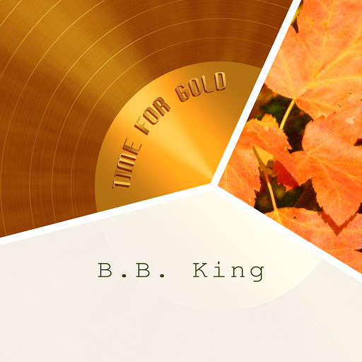 B.B. King альбом Time For Gold